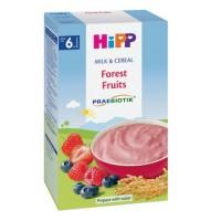 Hipp Млечна каша горски плодове